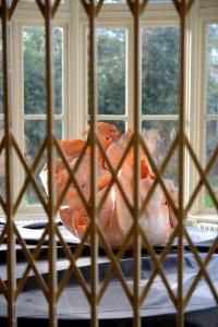 FRUCTUS, polyurethaan, rubber, 70 x 70 x 85 cm, 2012